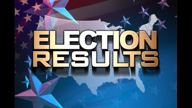 Newton Co. Election Results: August 7, 2012