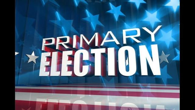 McDonald Co. Election Results: August 7, 2012